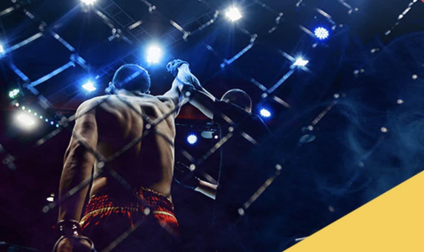 Photo of Typowanie FAME MMA 3. Bonus 50 PLN od firmy LV BET!